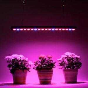 Фитосветильники для растений