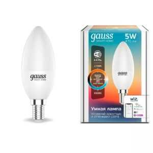 10 300x300 - Лампа  GAUSS SMART HOME DIM+CCT E14 C37 5 ВТ 1/10/100